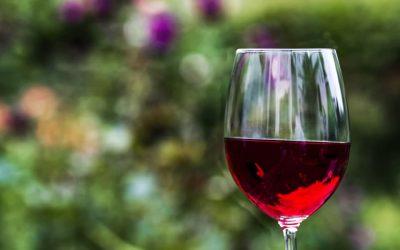 Les accords mets et vins, comment faire ?